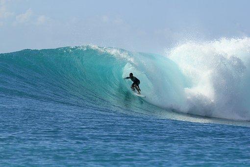 サーフィン, 波, 楽園, 夏, アドベンチャー, 休日, 屋外, サーフ, 海