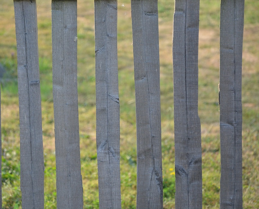 Houten Afscheiding Tuin : Houten blad sluiten green · gratis foto op pixabay