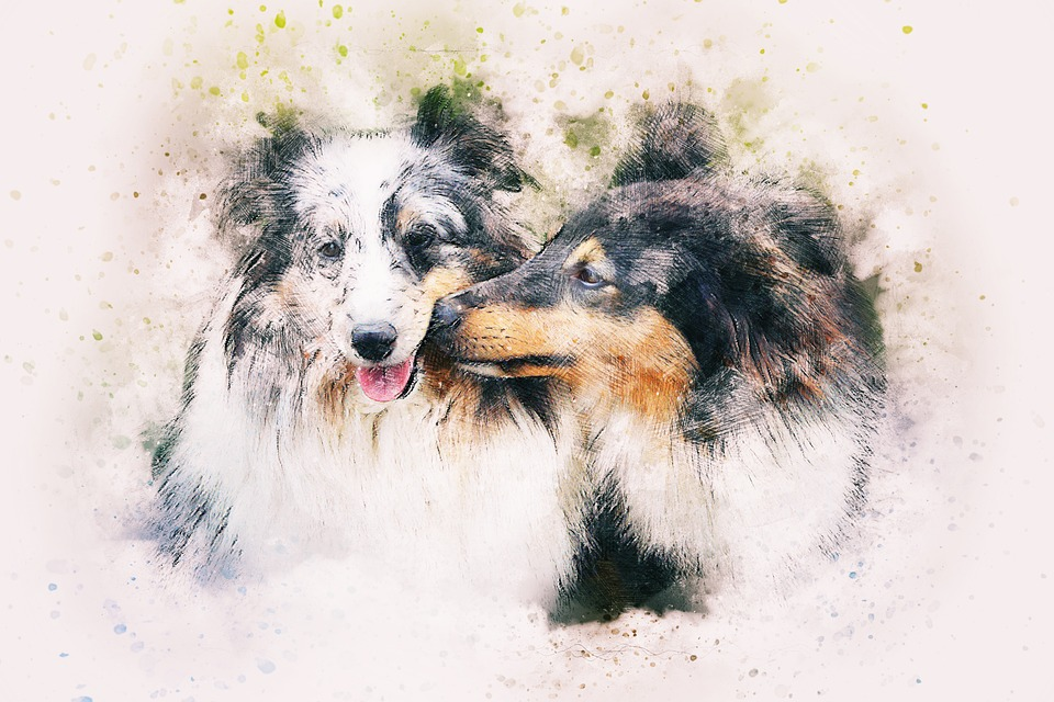 dogs animal art  u00b7 free image on pixabay