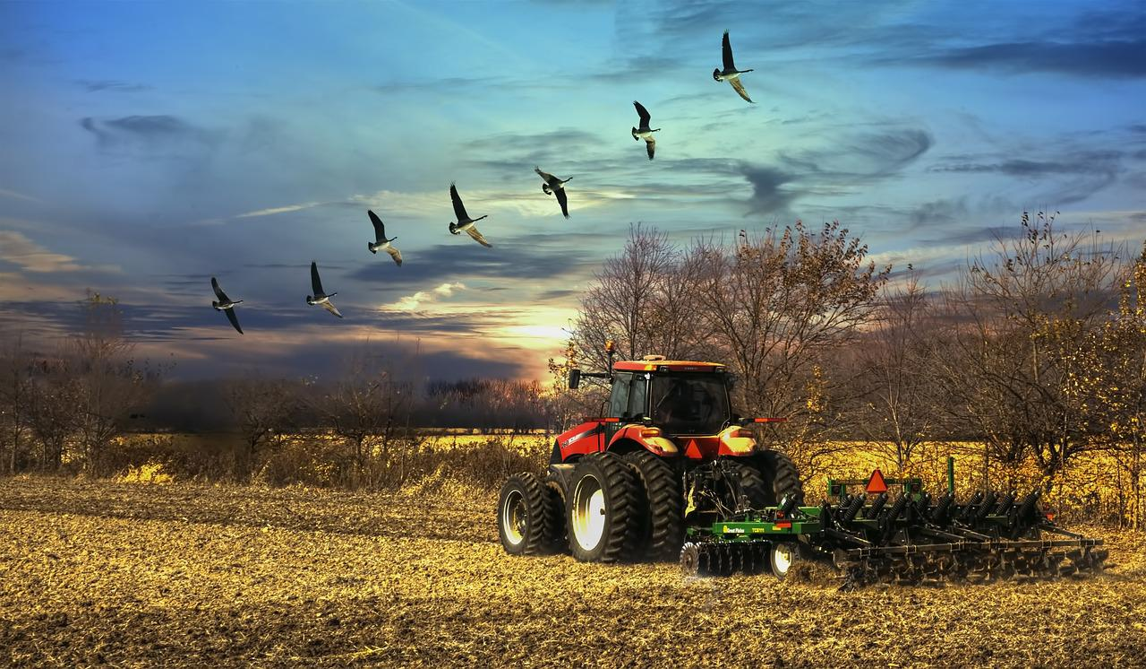 Картинка трактор на закате