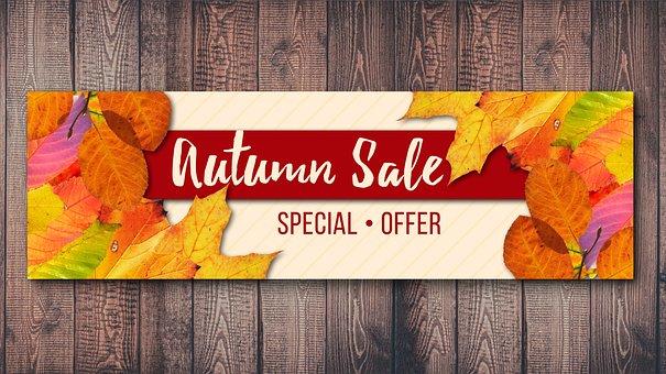 Autumn, Wood, Fund, Fall Foliage