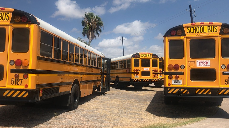 Bus, School, School Bus, Education, Transportation