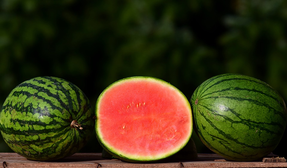 como escolher uma melancia