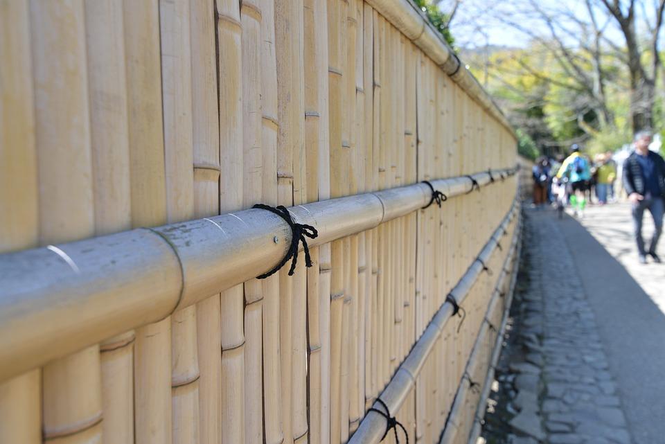 Amazing Benefits Of Bamboo Fencing
