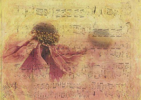 400+ Free Sheet Music & Music Images - Pixabay