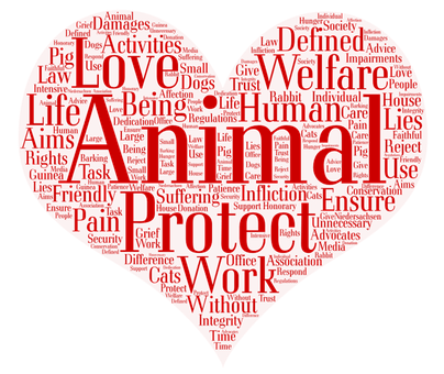 Word cloud, donation in form of a heart and the words in red letters like animal protect work