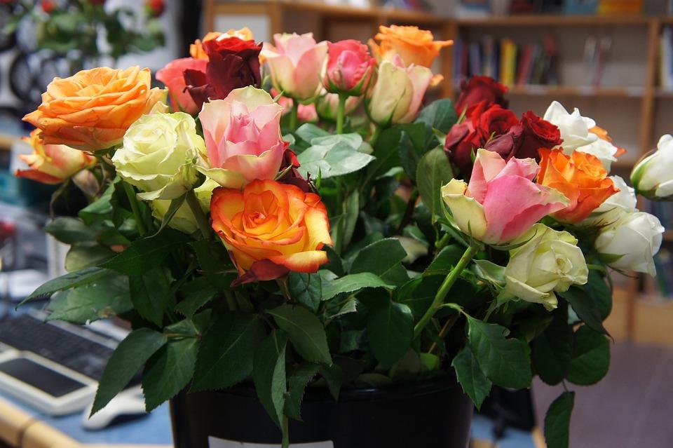 Сколько роз можно дарить девушке выбор цвета и количества цветов
