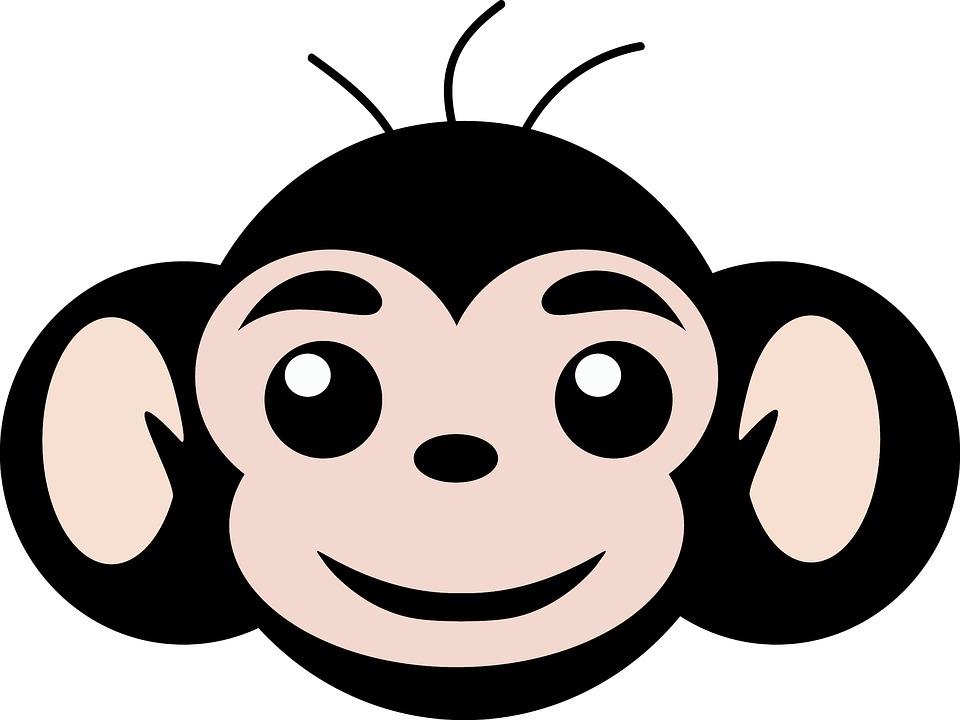 aap eenvoudige - gratis afbeelding op pixabay