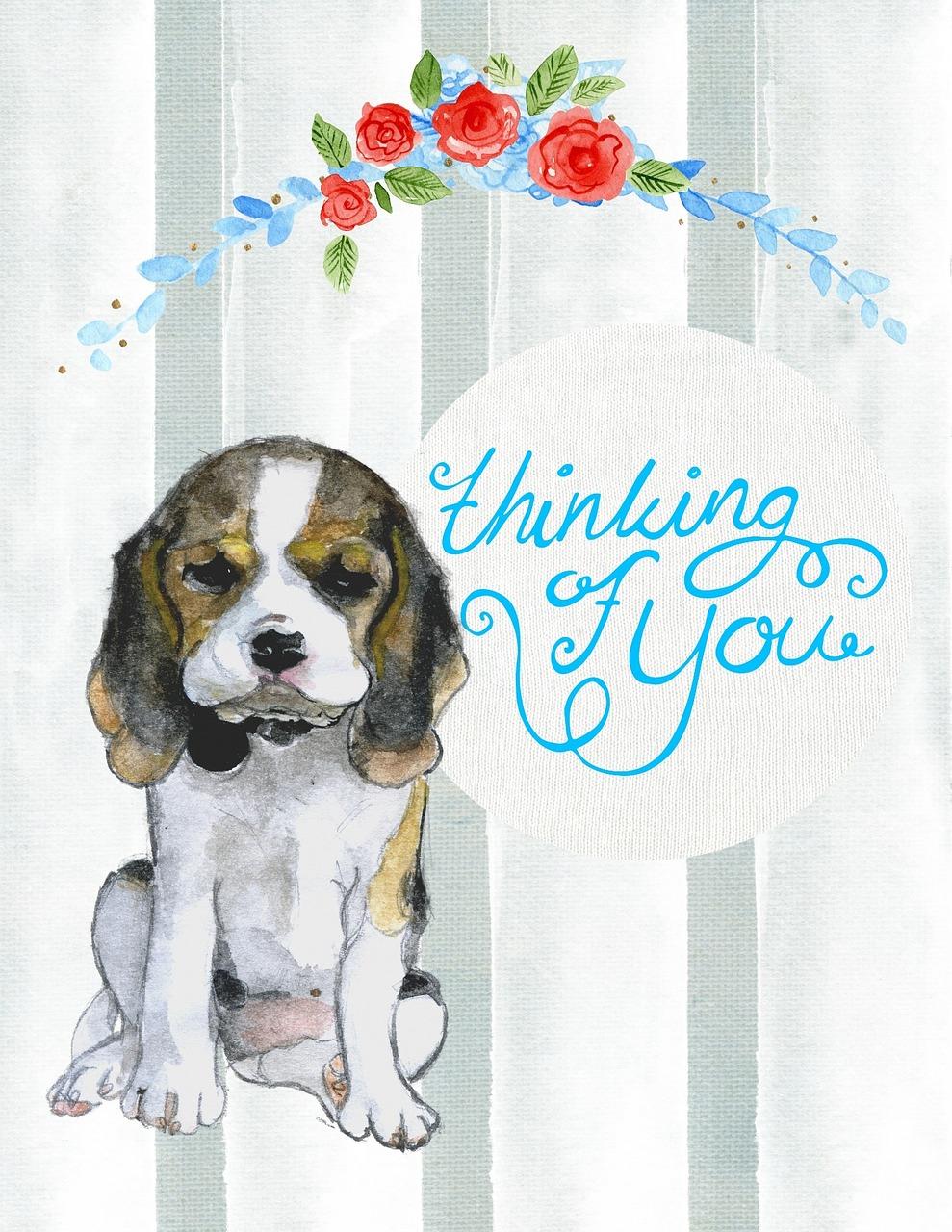 Thinking Of You Puppy Dog - Free photo on Pixabay