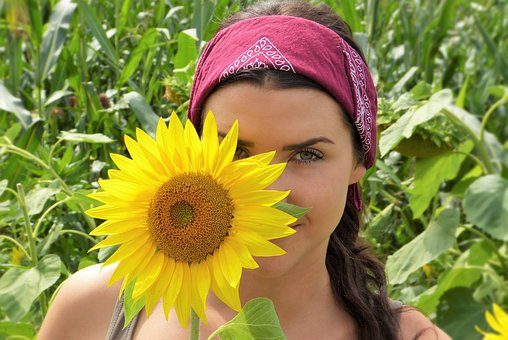Sun Flower, Girl, Face, Sun, Summer
