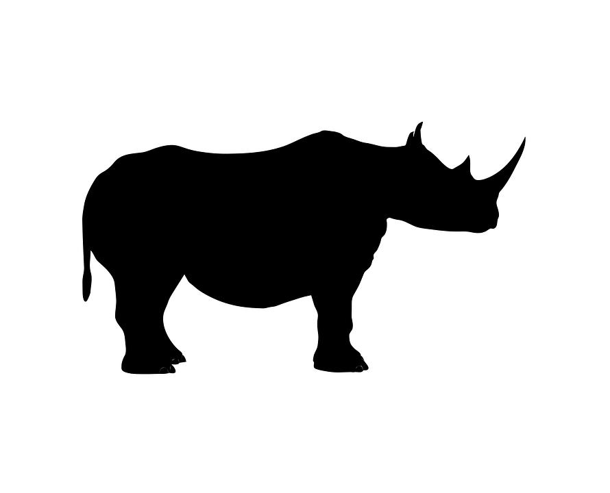 Rhino Animal Wild - Free vector graphic on Pixabay