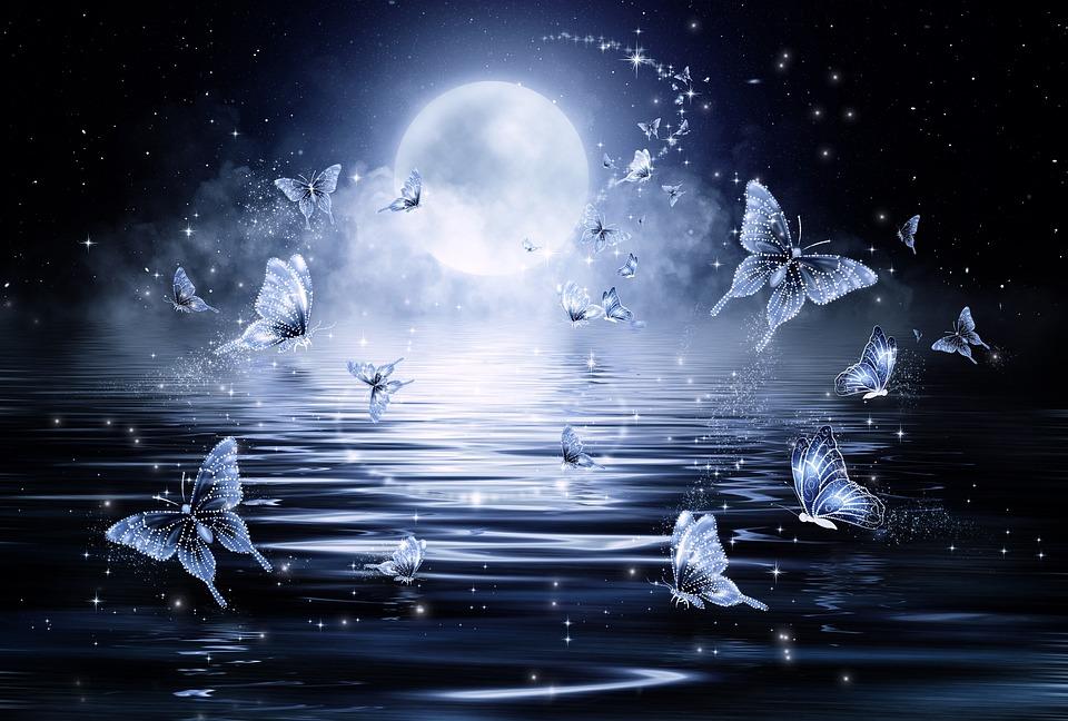 Papillon, Étoiles, Nuit, Fantaisie, Conte De Fées, Mer