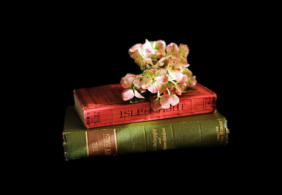 Livres Lecture Litterature Photo Gratuite Sur Pixabay