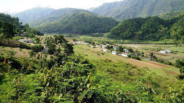 Nature, India, Jungle, Valley, Green