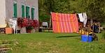 laundry, flowers, house