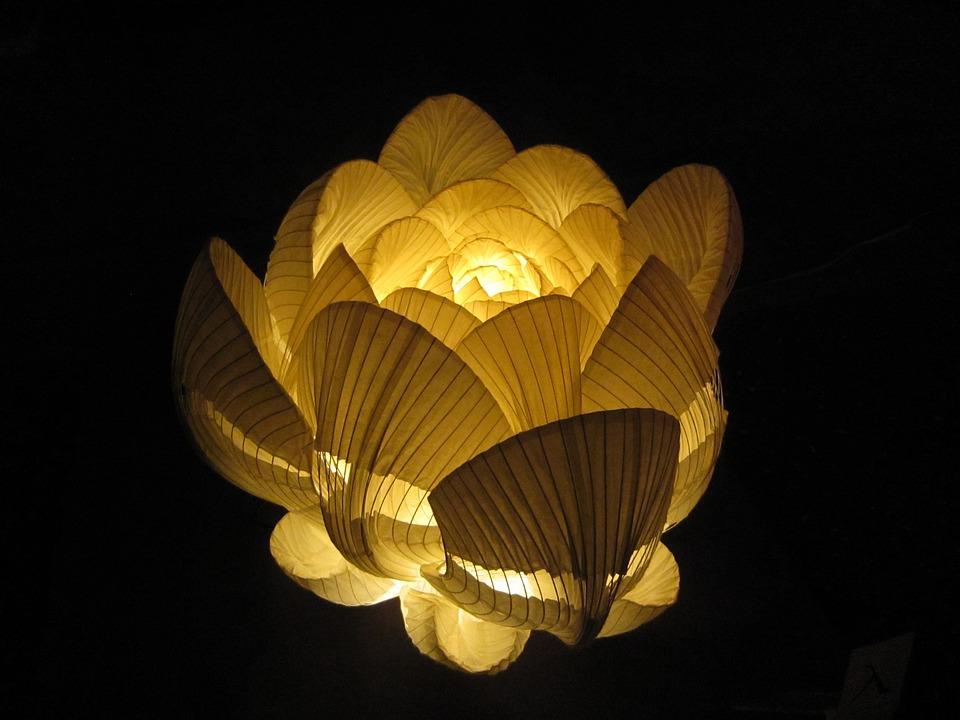 Blumen Lampe Japanpapier Kostenloses Foto Auf Pixabay