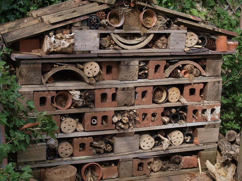 Bug Hotel, Garden, Rubbish