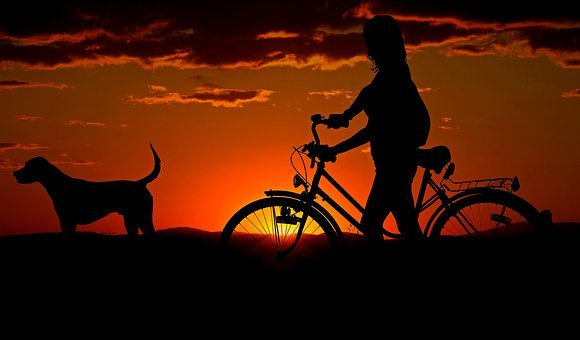 b8b55155eeb 4,000+ Free Bicycle & Bike Images - Pixabay
