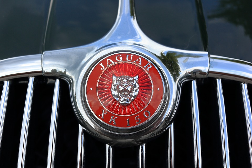 Jaguar Car Logo Bonnet Xk150 Xk 150 Ornament