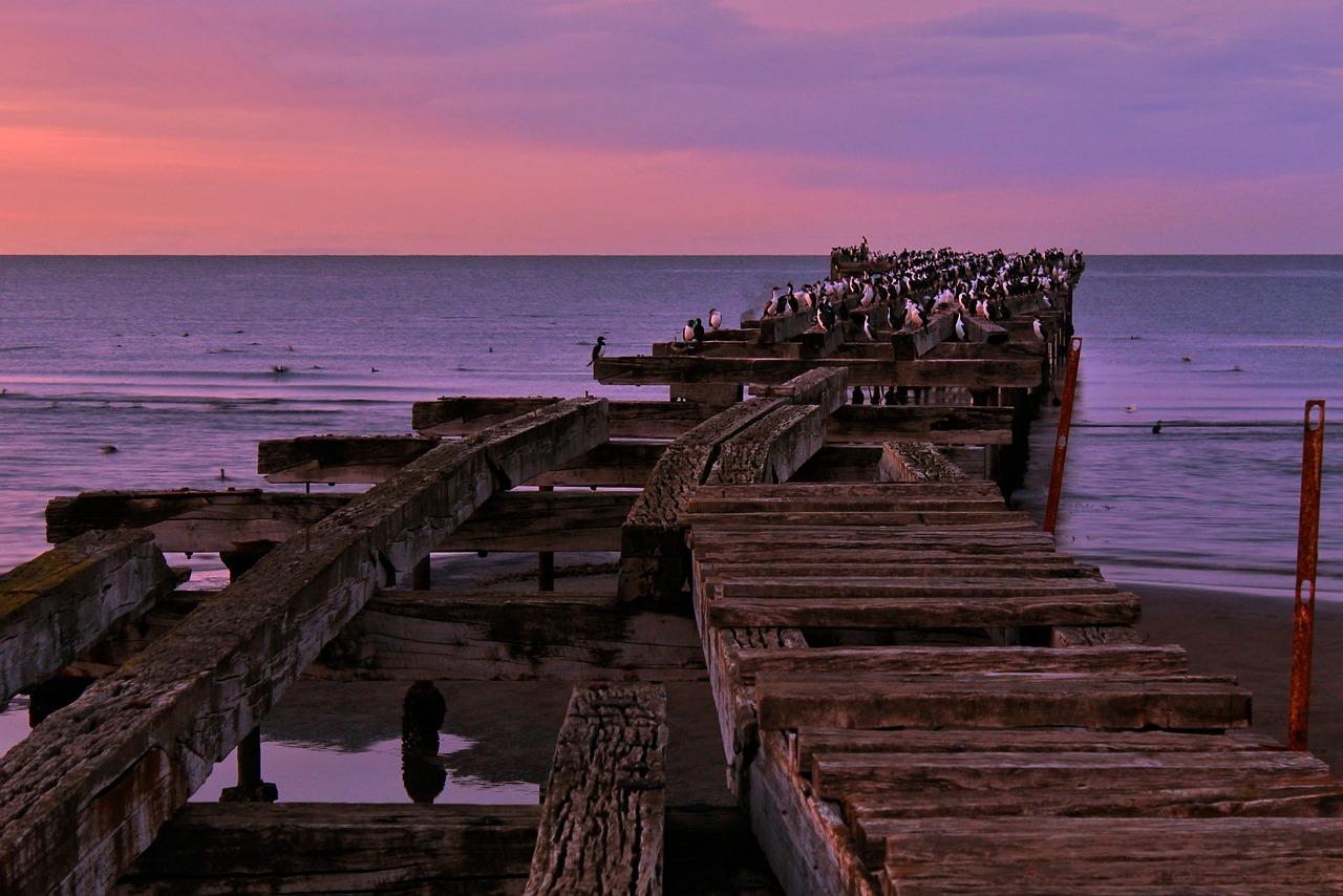 Punta Arenas Frühling Meer - Kostenloses Foto auf Pixabay