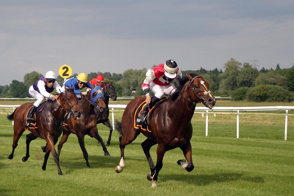 Pferderennen, Horse Racing, Jockey, Iffezheim