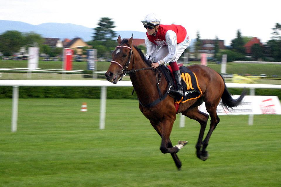 Horse Racing, Jockey, Iffezheim, Baden Baden, Racehorse