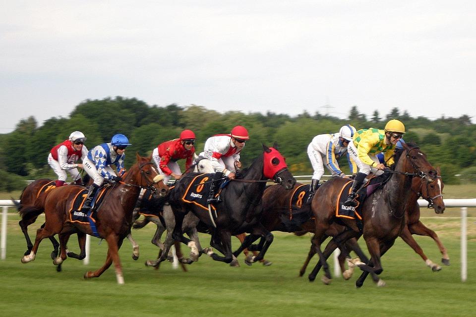 Carreras De Caballos, Horse Racing, Jockey, Iffezheim