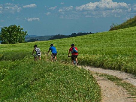Bicycle, Man, Way, Sport, Bike, Cycle