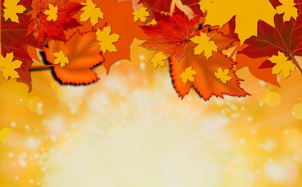 Autumn Fall Background · Free Image On Pixabay
