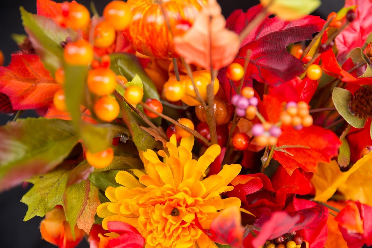 красивые осенние цветы картинки вертикальные короткая