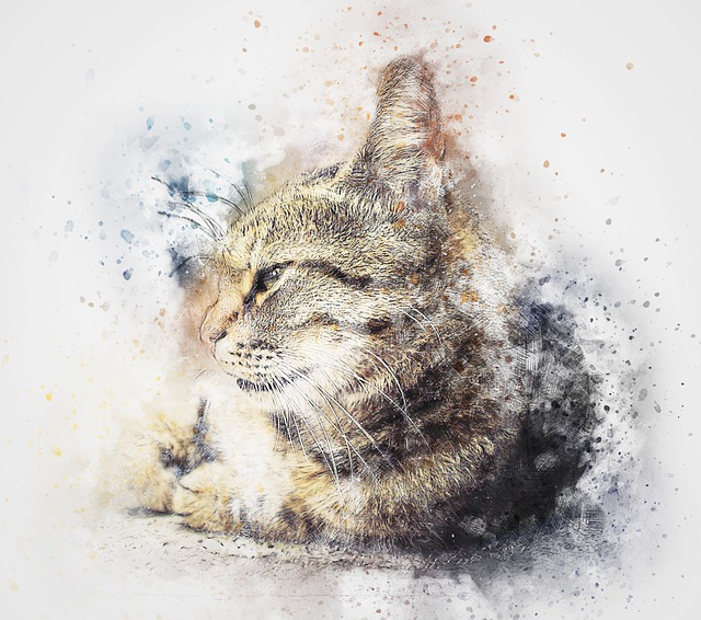 cat animal abstract watercolor pixabay painting cremation diamonds tribute special oct