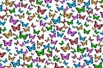 butterflies, colorful, pattern