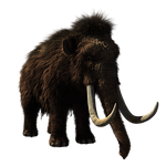 woolly mammoth, animal, prehistoric