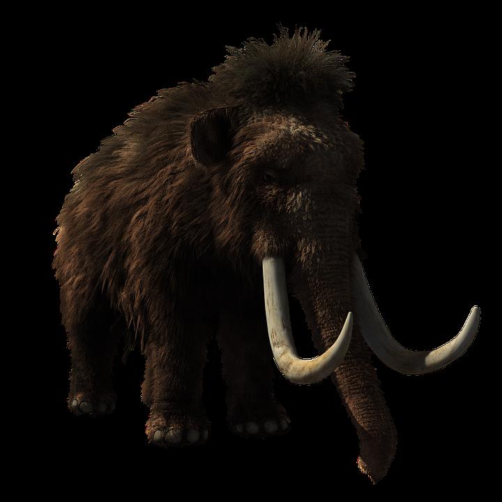 mamut-lanudo