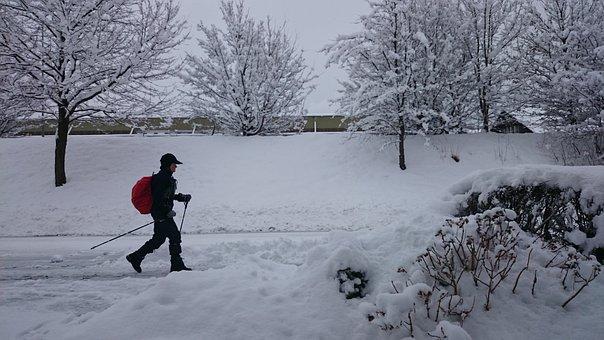 冬, 雪, ノルディックウォー キング, 霜, スペーサー, 冬の夢