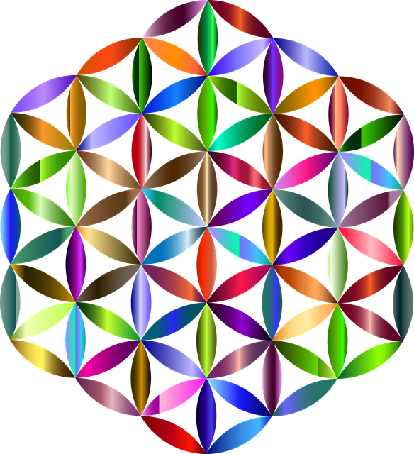 Flower Of Life Sacred Geometry - Free vector graphic on ...