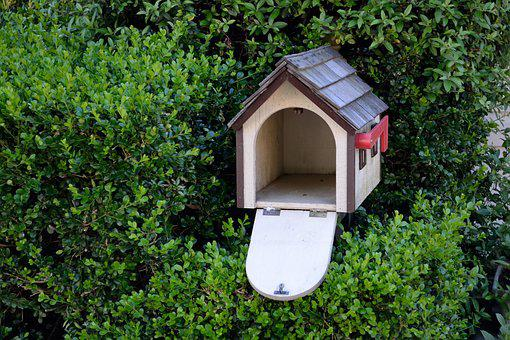 Bird House, Garden, Bird, Nature, House