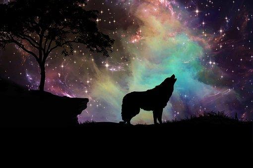 Galaxy, Nebula, Stars, Digital Art, Wolf