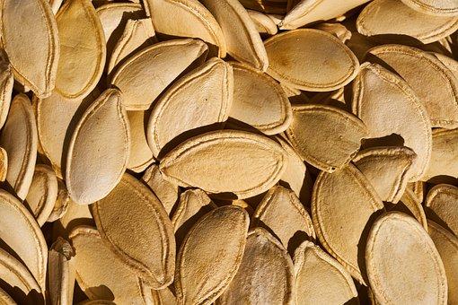 Pumpkin Seeds, Seed, Pumpkin, Fresh