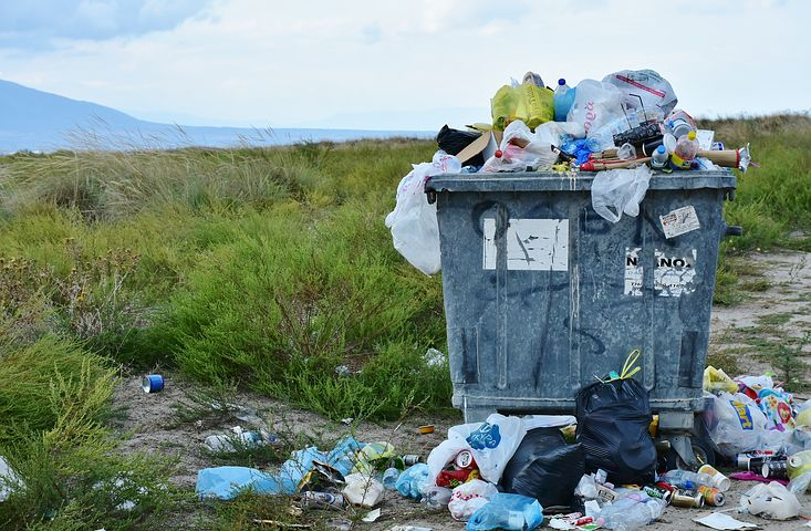 How to Perform a Trash Audit