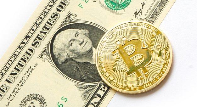 Bitcoin, Dollaro