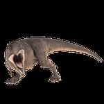 t-rex, prehistoric, jurassic