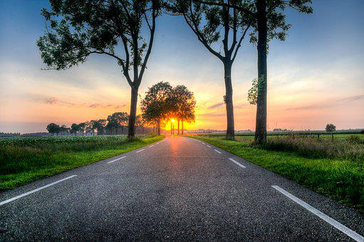 Sunset, Road, Trees, Asphalt, Sunlight