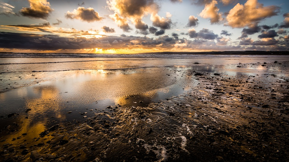 Filey, ビーチ, ヨークシャー, 海景, 日の出, 秋, 黄金の時間, 反射, 小石, 波, 潮, 低潮