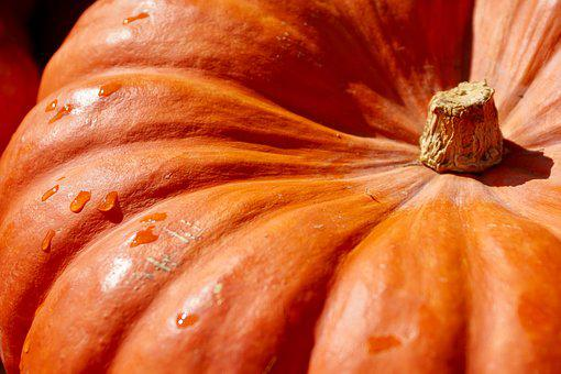 Pumpkin, Orange, Harvest, Food, Autumn