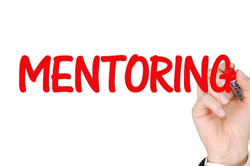 Mentoring, Business, Success, Mentor