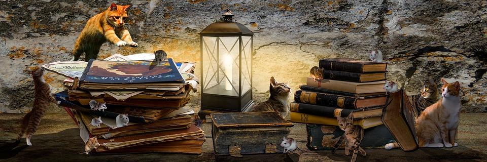 Animaux, Fantasy, Composer, Livres, Pile De Livre, Cat