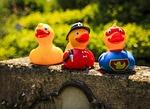 ducks, fire