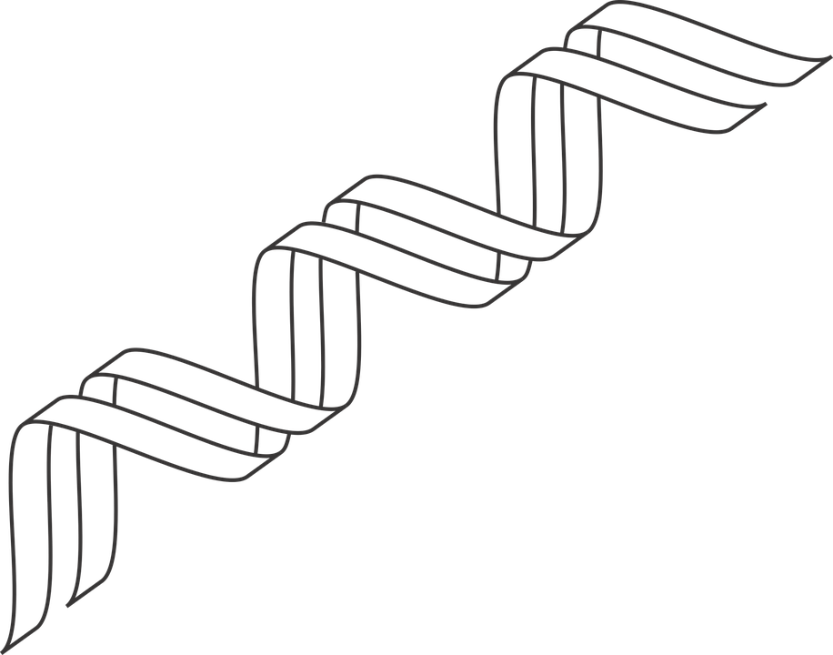 gene outline dna icon  u00b7 free vector graphic on pixabay