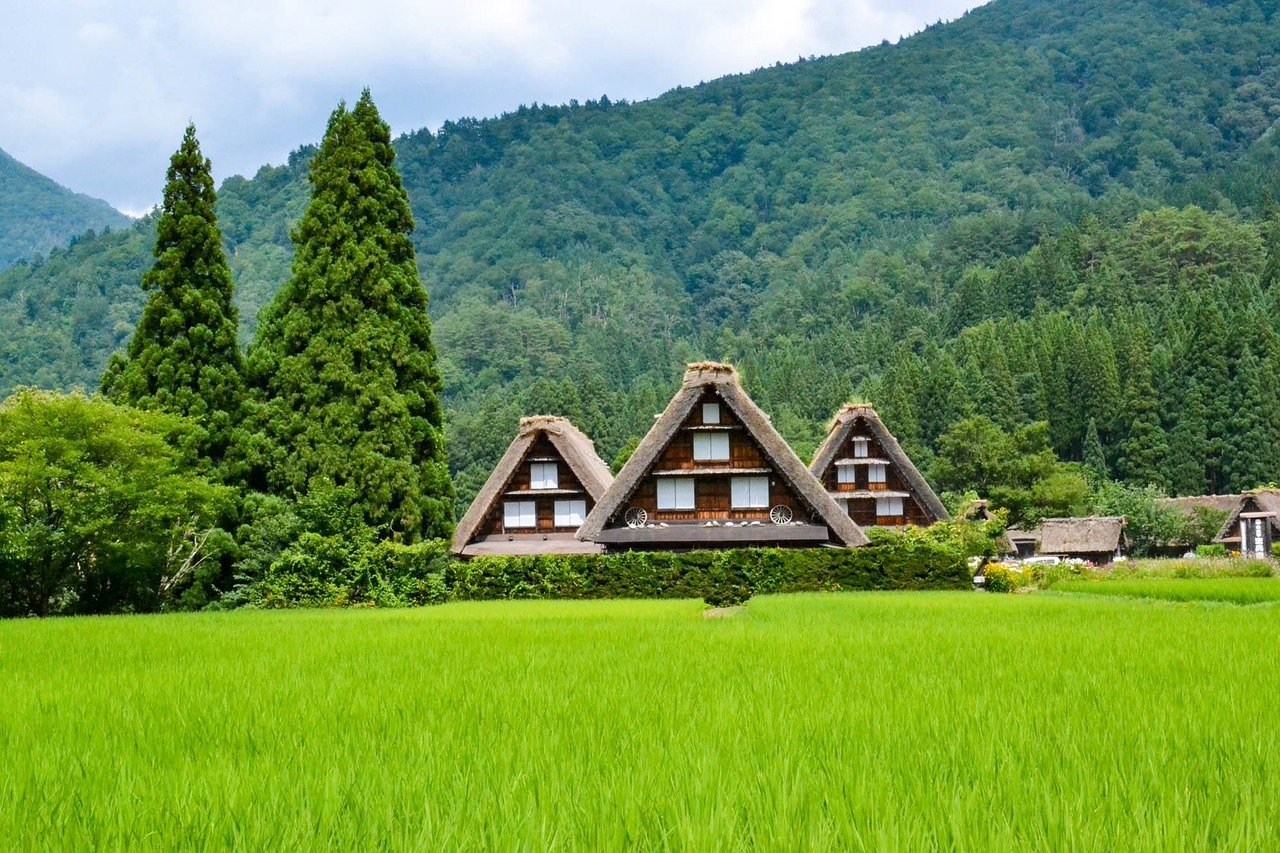 Painting By Koukei Kojima | Landscape paintings, Japan landscape, Japanese art